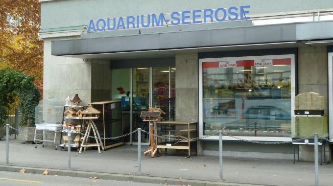 AquariumSeerose